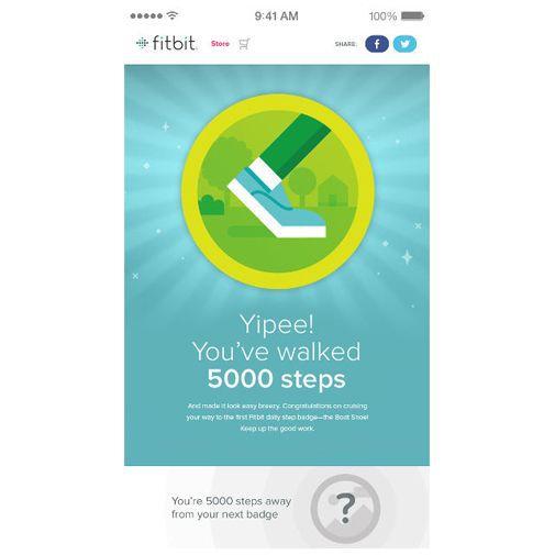 Productafbeelding van de Fitbit Flex Slate
